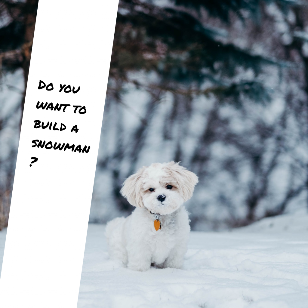 Do you want to build a snowman? Instagram Post Template
