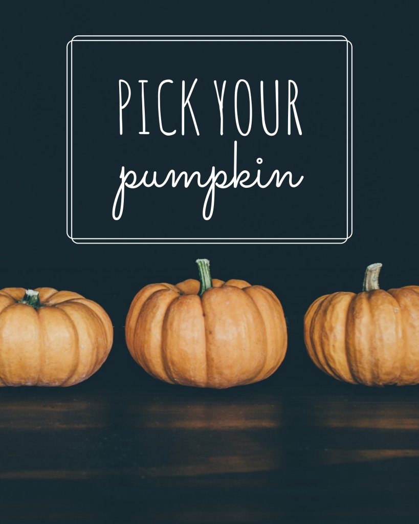 PICK YOUR  pumpkin Instagram Post Template