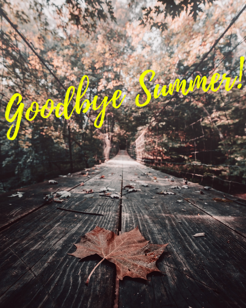 Goodbye Summer! Instagram Post Template