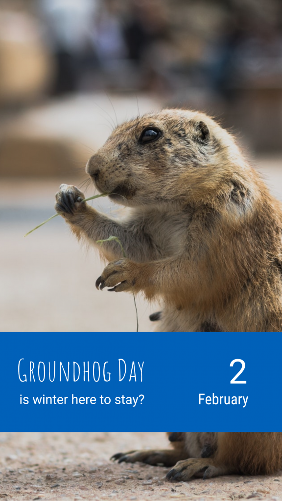 Groundhog Day 2 is winter here to stay? February Instagram Story Template
