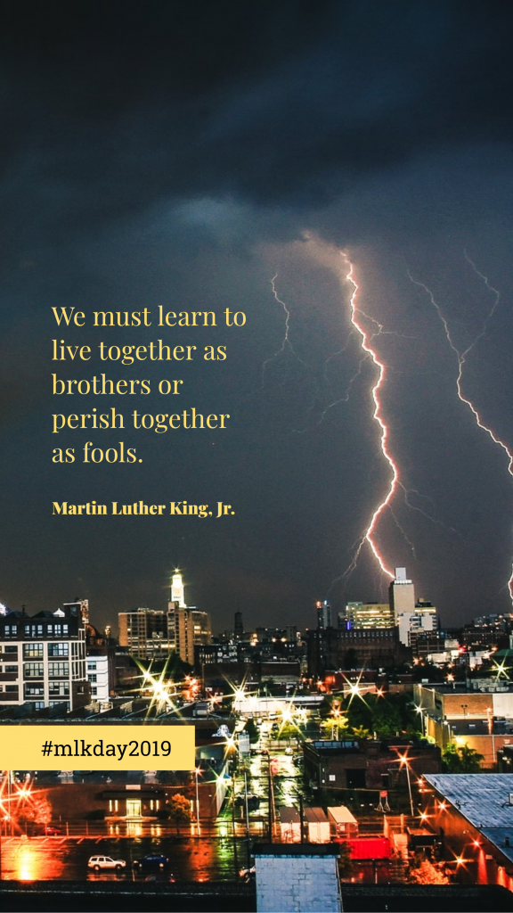 We must learn to live together as brothers or perish together as fools. Martin Luther King, Jr. #mlkday2019 Instagram Story Captions