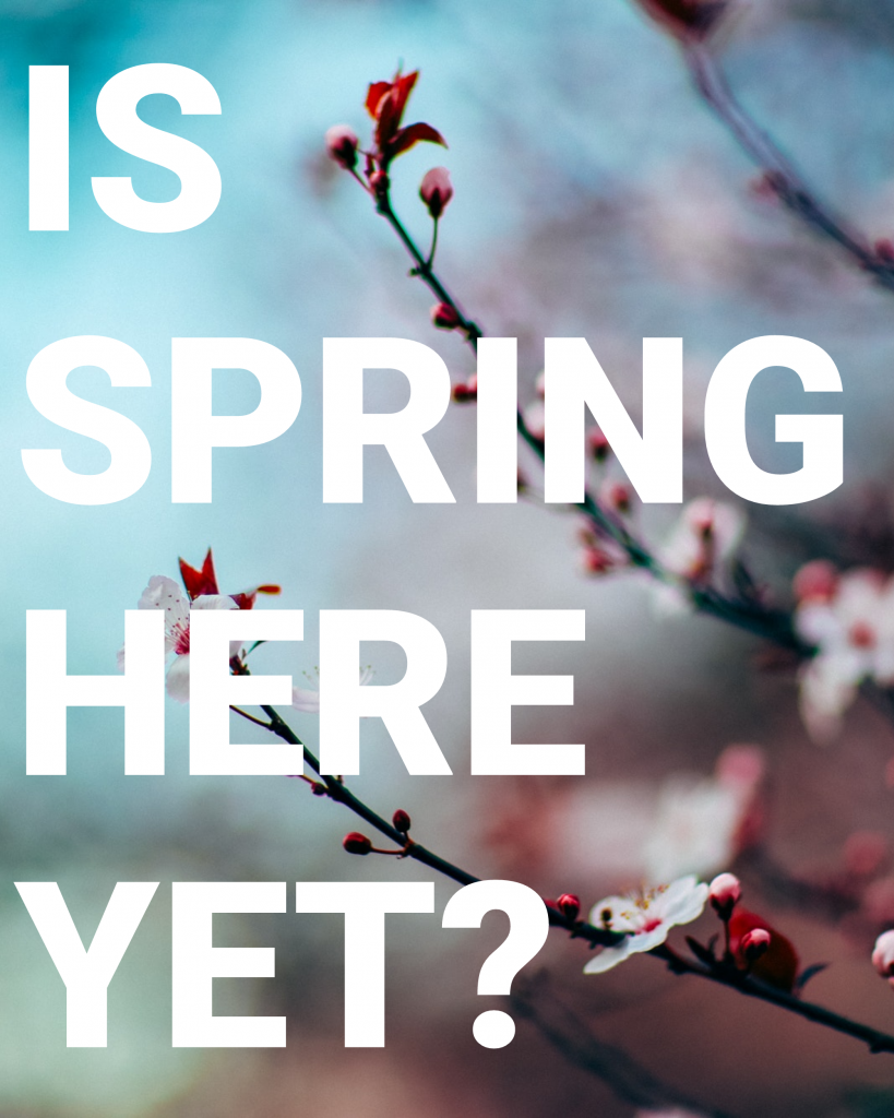 IS SPRING HERE YET? Instagram Post Template