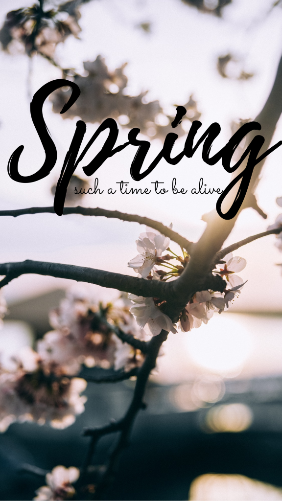 Spring such a time to be alive Instagram Story Template