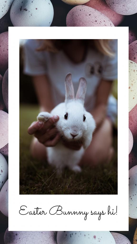Easter Bunnny says hi! Instagram Story Template