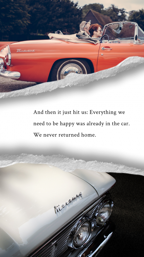 And then it just hit us: Everything we need to be happy was already in the car. We never returned home. Instagram Story Template